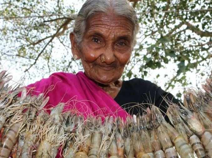 107-year-old YouTube 'chef' Mastanamma passes away https://t.co/pnniiXzPc3 via @TOICitiesNews https://t.co/7Pg8i199fT