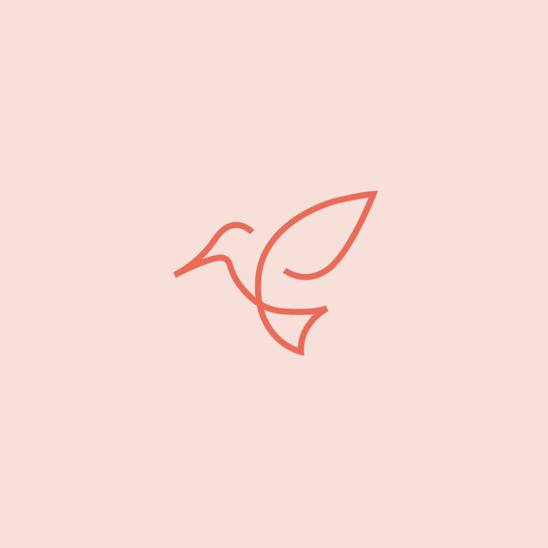 Logo for Colibri Jewelry. ↳ nasibov.me/logofolio