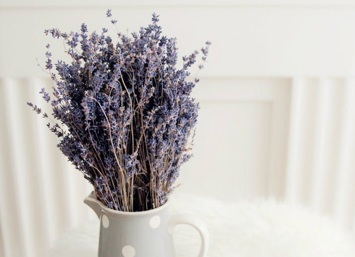 The #terpene linalool, also found in #lavender, has been shown to strengthen the #immune system & help prevent #seizures.  https:// buff.ly/2GcBM3J     #immunity #terps #CannabisFact #cannabis #marijuana #DidYouKnow #HealthAndWellness<br>http://pic.twitter.com/sT62slqgn5