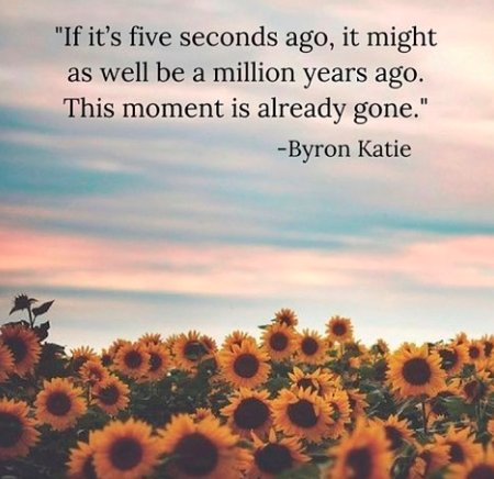 Let's seize every moment this Wednesday! #WednesdayWisdom