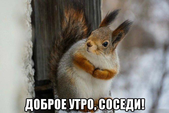 часть татар доброе утро соседи картинки ваше