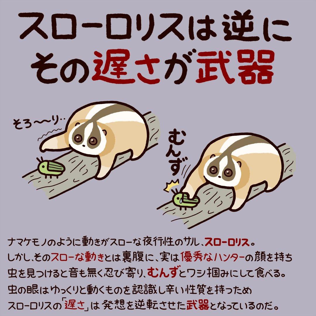 今日から使える動物豆知識