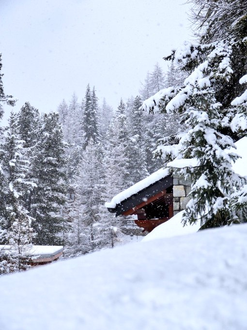 #JeudiPhoto Une belle journée sous la neige ❄️❄️❄️ #maplagne Photo