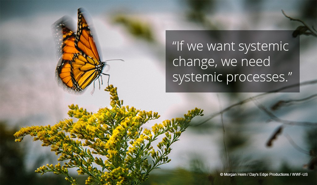 .@andi_sharma: There is very little evidence that isolated initiatives lead to systemic change. Need to look at collective impact #WWFfuller <br>http://pic.twitter.com/NZC8k50RzU