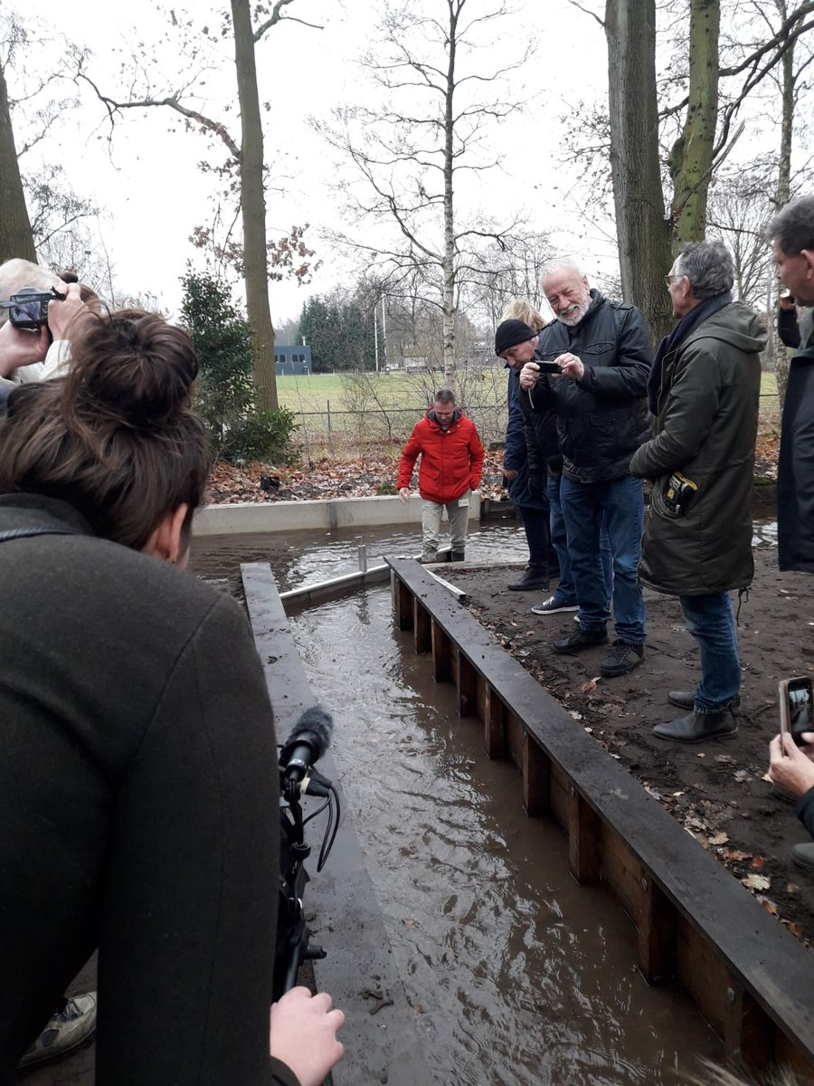 Vanmiddag is de schuif opengezet om de nieuw aangelegde beek in het Zuiderpark te voeden. #zuiderpark @gem_apeldoorn @Stimenz