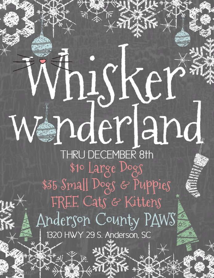 Anderson County PAWS on Twitter: