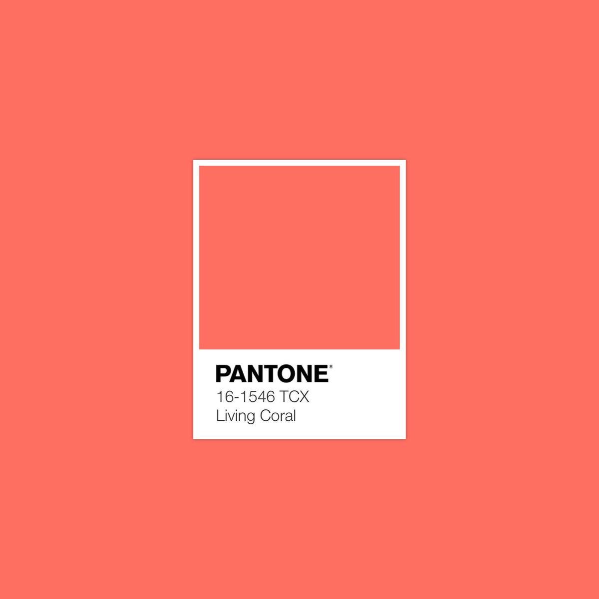 Design Museum's photo on Pantone