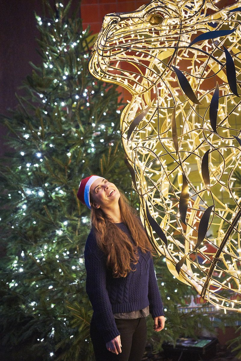 London Zoo At Christmas.See On Twitter Christmas At London Zoo Has Started Get