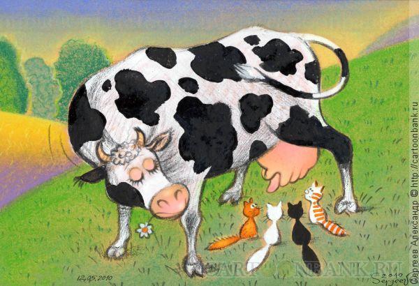 коровы картинки карикатуры воздействие попадает центральная