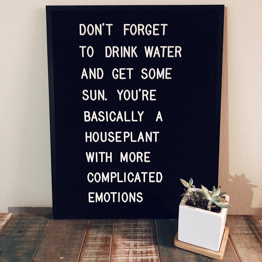 de6667c2af Friendly PSA from @sarcasticletters and @petaloom: Drink water and get some  sun☀