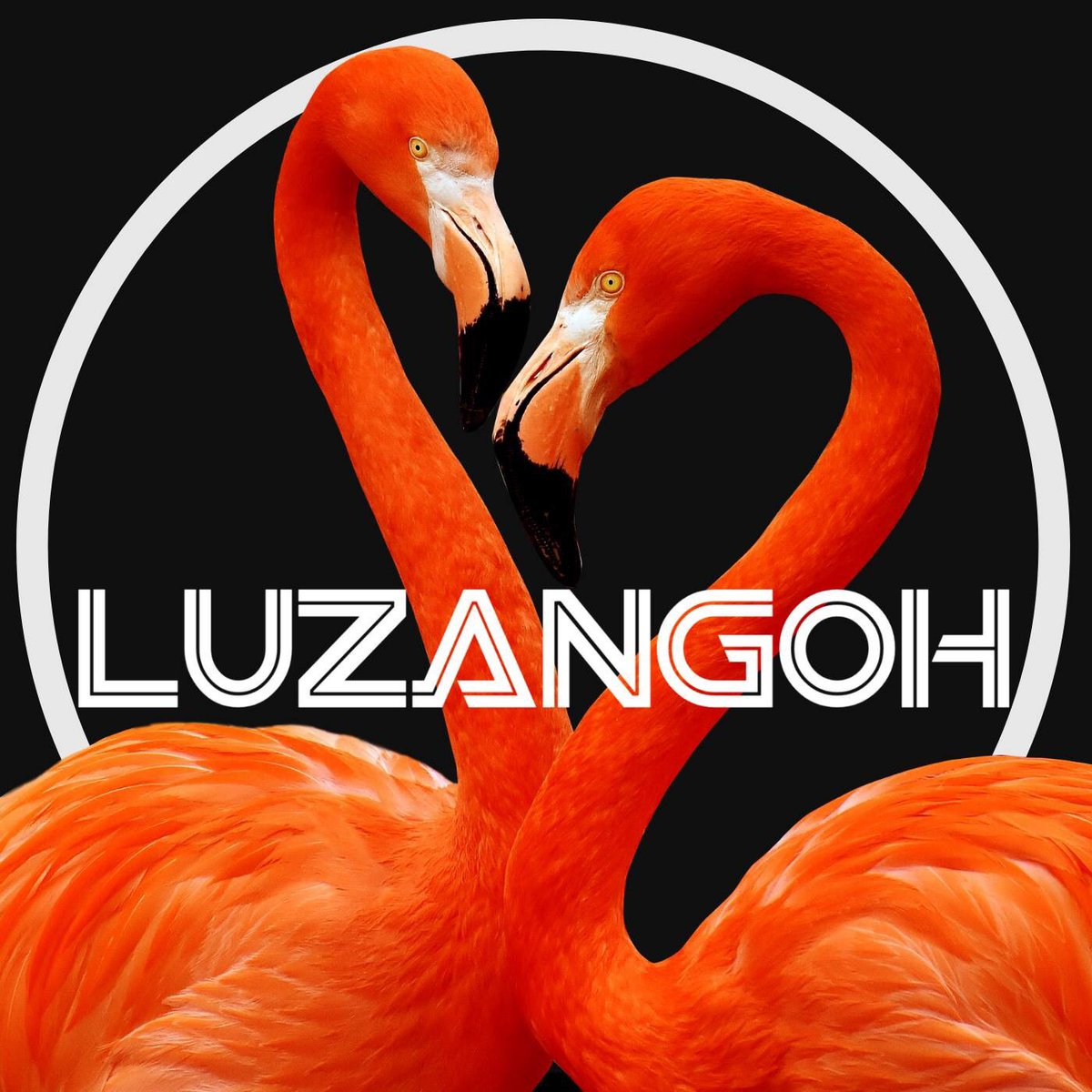 "Discover this brilliant ( New Song ) & video ""Pendulum"" By the awesome #LUZANGOH ( @luzangoh ) Intergalactic Songs of Love and Death. From the fantastic new album ""Glaciers"" Pendulum by Luzangoh youtu.be/NQoIFt2JV24 via @YouTube"