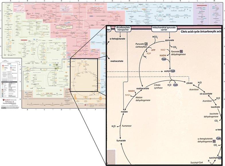 pdf Конструкции направляющих систем и
