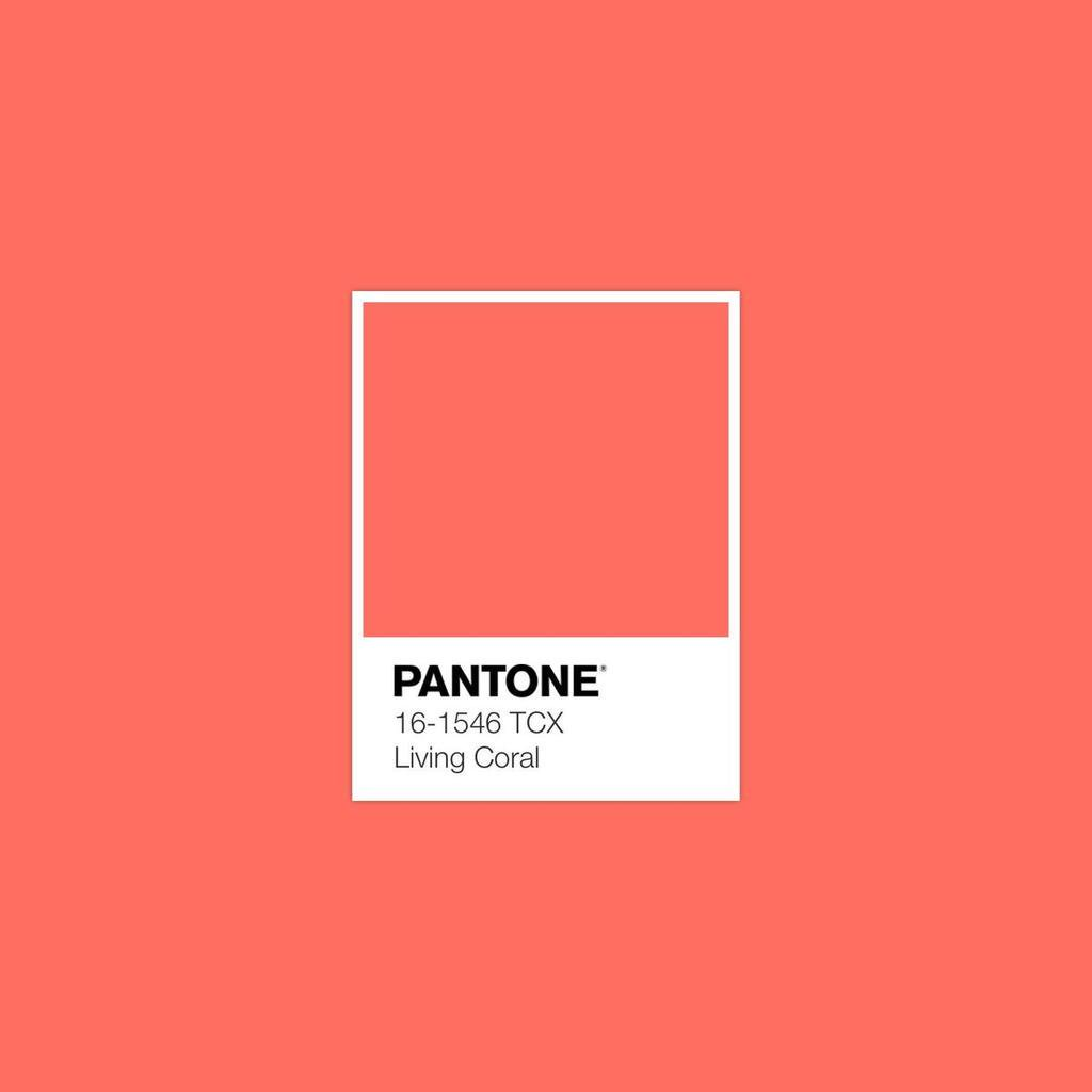 Pantone's Color of the Year for 2019 is Living Coral.
