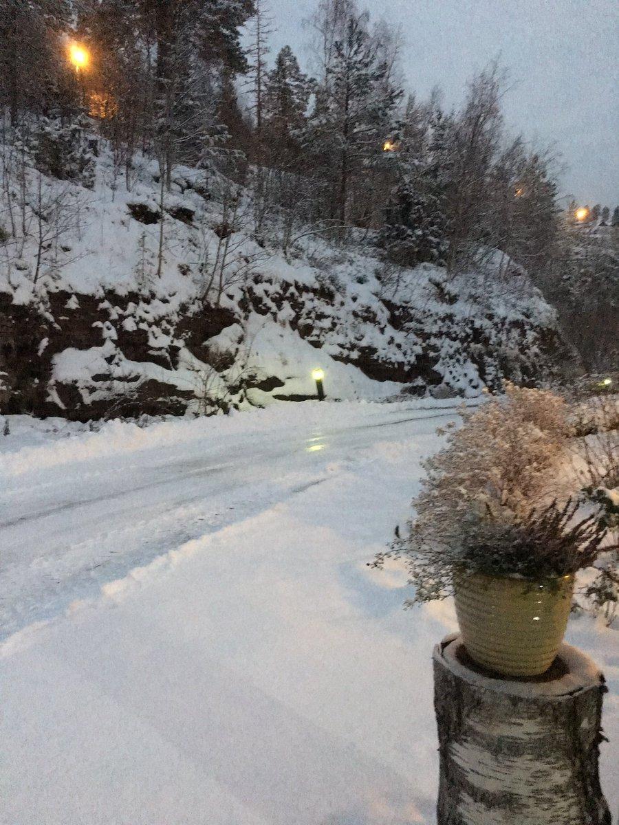 Doc Mimmi On Twitter Guten Morgen Aus Norway Es Hat