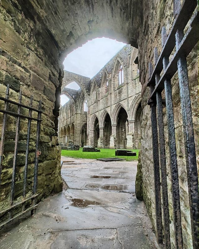 lines composed a few miles from tintern abbey