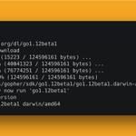 Image for the Tweet beginning: 💥 Go 1.12 Beta 1