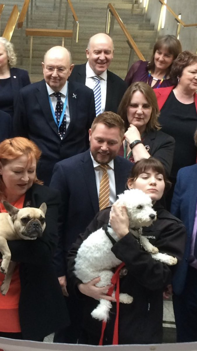 Philip Sim On Twitter Ah The Traditional Parliamentary Puppy Scrum