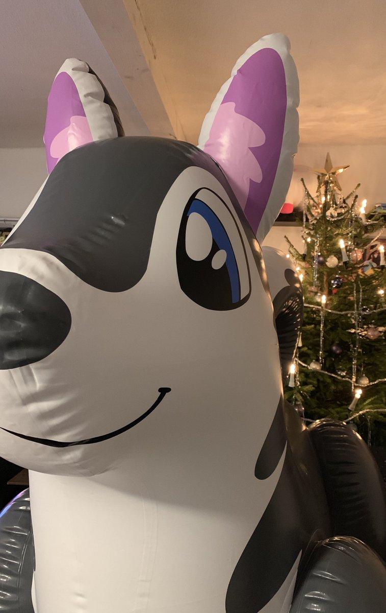 Christmas Doggo :3 #husky #puffypawscustomtoys #squeaky #pooltoy #inflatable #aufblasbar