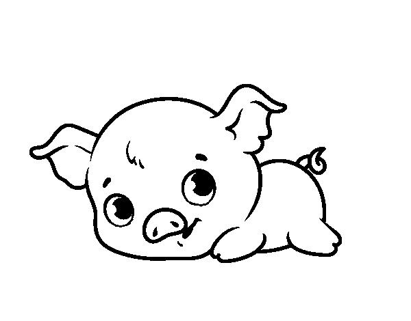 Смешная свинка картинка на окно