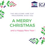 The ICAT Programme team would like to wish everyone a very Merry Christmas and a Happy New Year!