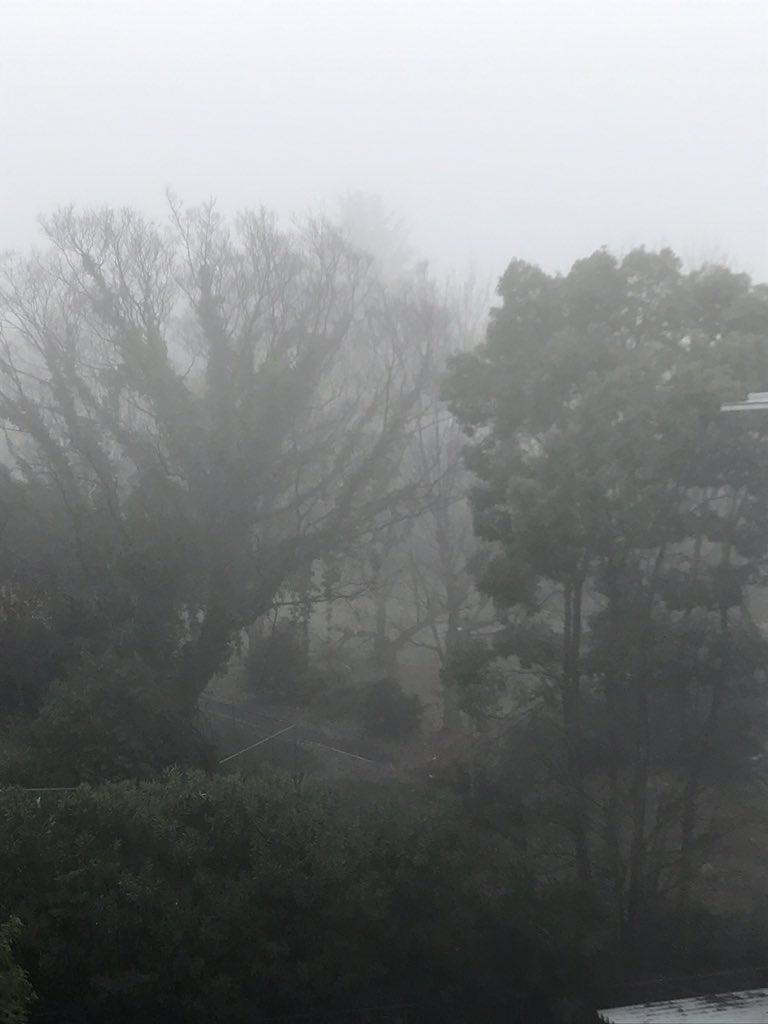 画像,京都市内 霧が濃い!びっくり。どんどん濃くなってる気が、、、近鉄京都線 5分ほど遅れてる様。 https://t.co/hRc5dGyG8N…