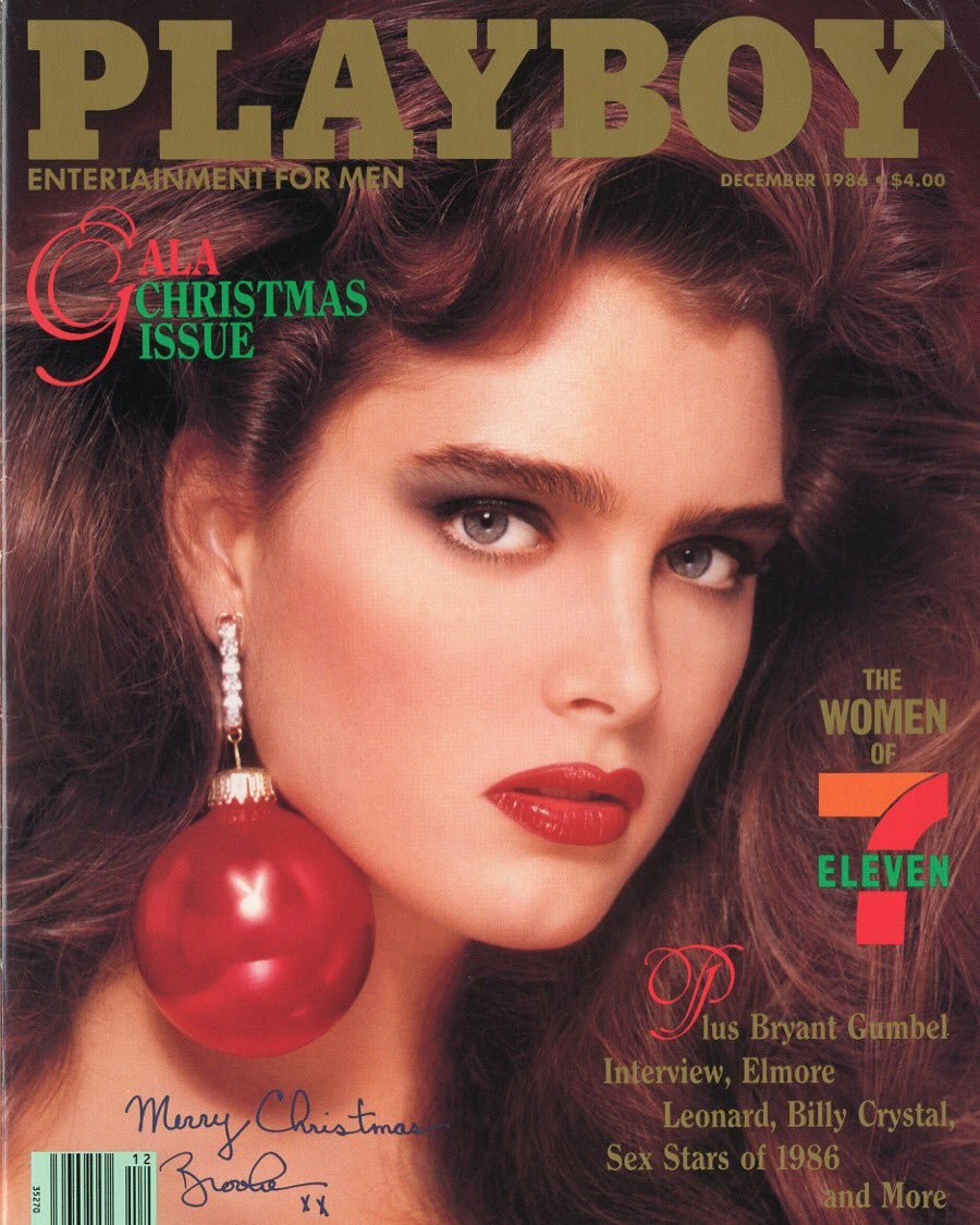 Snapchat Brooke Shields naked (18 foto and video), Sexy, Bikini, Twitter, lingerie 2017