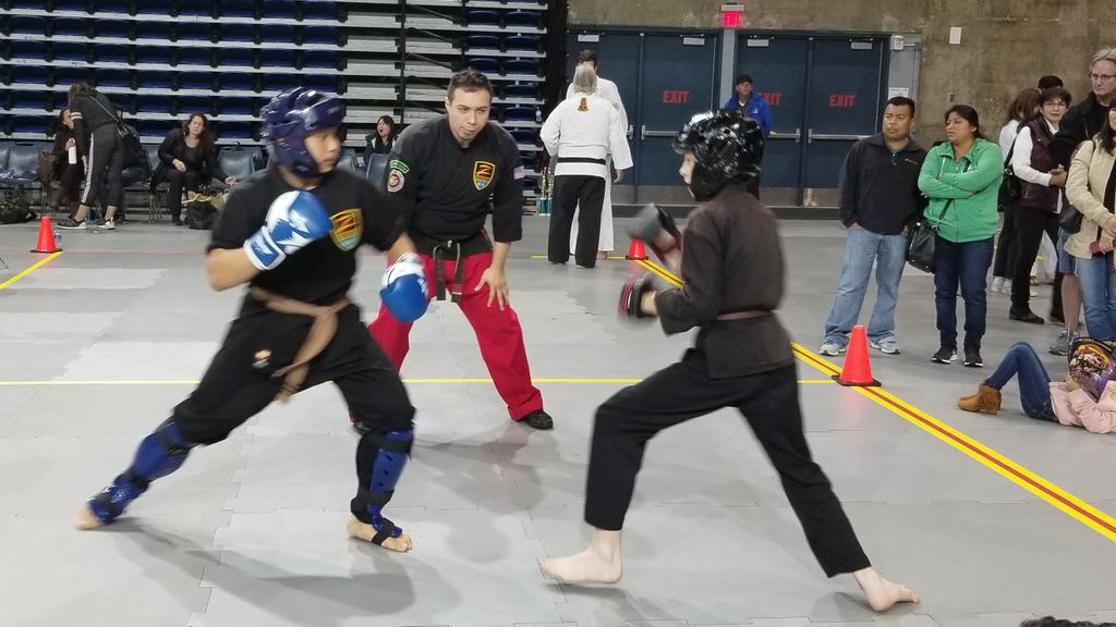 Our son Brennan (on the left) just won second place in Brown Belt Sparring at the Winter 2018 Z Ultimate Grand Championship Martial Arts Tournament!