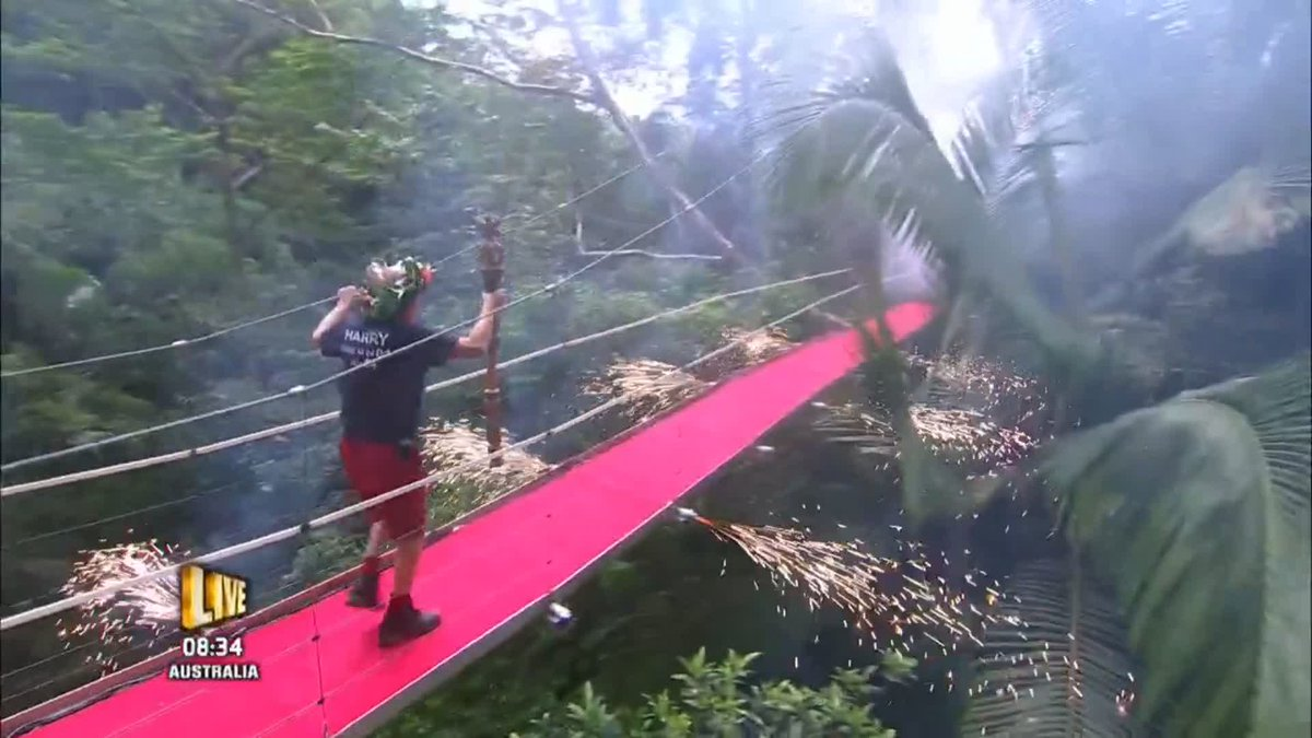 RT @ITV: It's Harry! All hail the new King of the Jungle 👑 Congratulations Harry. Amazing! @redknapp #ImACeleb https://t.co/09AOrWIecP