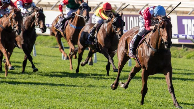 This is the best 3yo filly in Australia as it stands, it is pretty tough to split her and The Autumn Sun, If there was any doubt prior to Saturday, Vince Acardi says there is no doubt now that Arcadia Queen is elite. 📻1206AM 💻 Photo