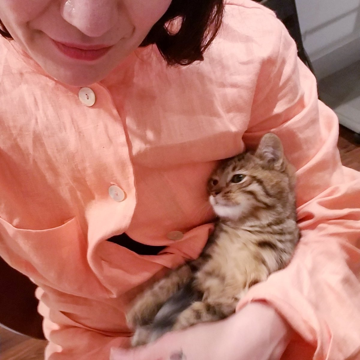 endorphins are happening.  #newkitten <br>http://pic.twitter.com/MVR5UObaqW