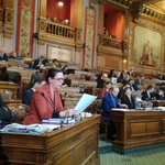 #ConseildeParis Twitter Photo