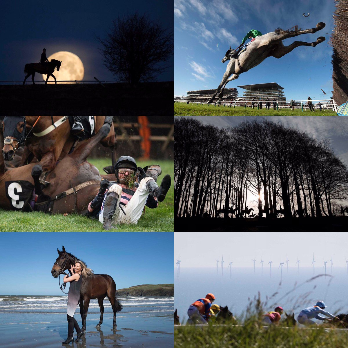 Stunning shots from horse racing's photographer of the year