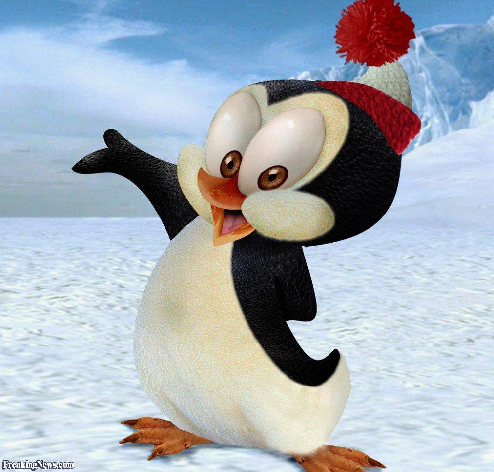 Замечательной бабушке, картинки пингвинов прикольные