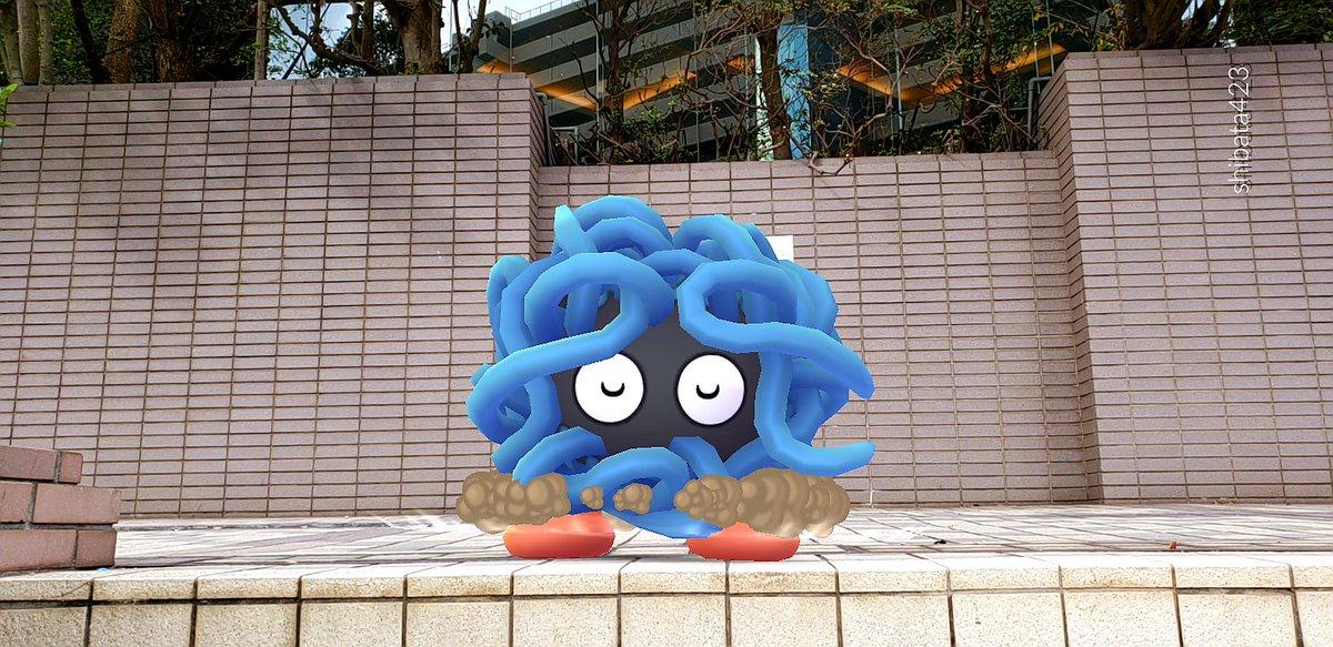 shibata423さんの投稿画像