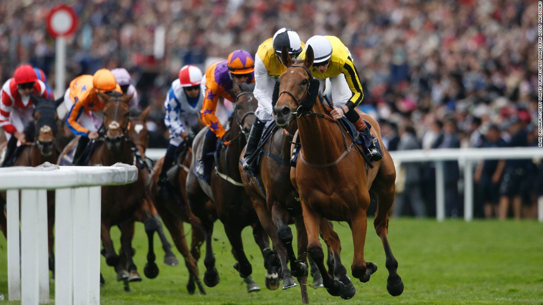 🏇 #Lingfield racing! 🏇  BET £10 GET £30 in #FreeBets by backing Little Boy Boru.  #CoralBetting 👉 http://bit.ly/JJ-Coral-1