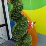 Sarah the Elf looks like she is up to no good climbing!!  @AHintOfLimeVP #letmetakeanelfie #whereareyougoing #elfie #elfontheshelf