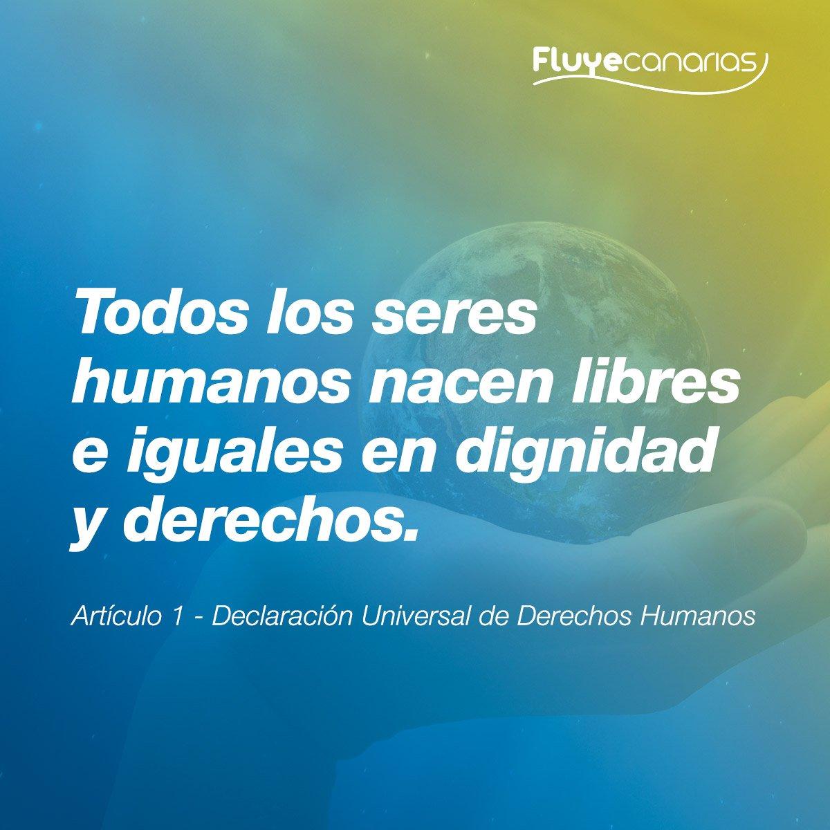 Fluyecanarias On Twitter La Declaración Universal De Los