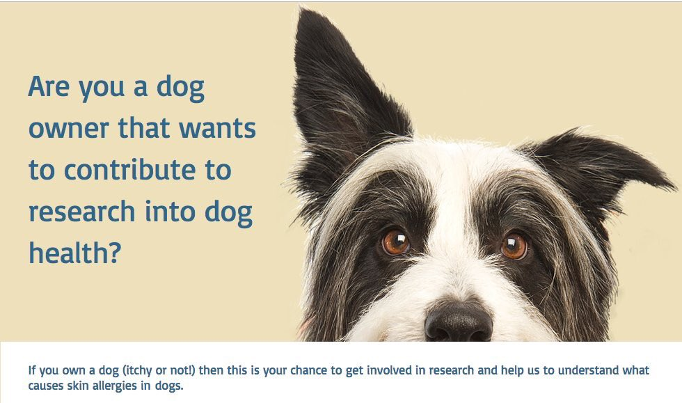 We're currently looking for dog owners of breeds at high risk of skin allergies to complete our dog skin health questionnaire.   If you own a Westie, Boxer, French Bulldog, Staffordshire Bull Terrier or Tibetan Terrier then please take part at our website  http://www. itchydogproject.co.uk  &nbsp;  <br>http://pic.twitter.com/thkLfzzQGp