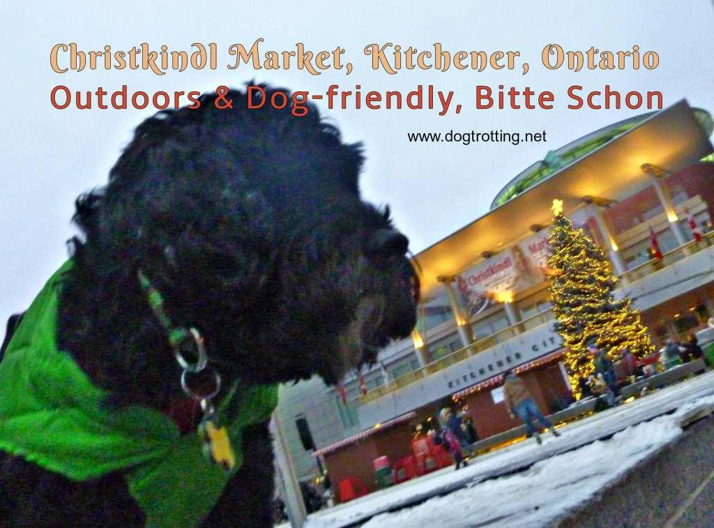 Travel Kitchener, ON: Christkindl Market ... with the dog #dogtravel #christkindl #christmasmarket  http:// dogtrotting.net/2018/12/10/tra vel-kitchener-on-christkindl-market-with-the-dog/ &nbsp; … <br>http://pic.twitter.com/ttshRlnPn6