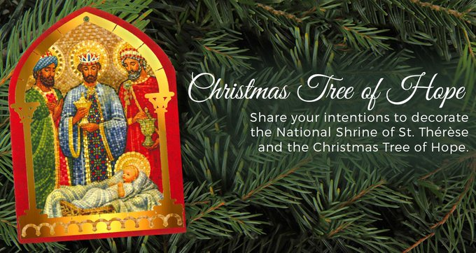 Every year, our friends send us their Christmas Novena Intentions to be displayed on our Christmas Tree of Hope at the National Shrine of St. Therese! What are you praying for this Christmas Season? Visit our blog to learn more: Foto
