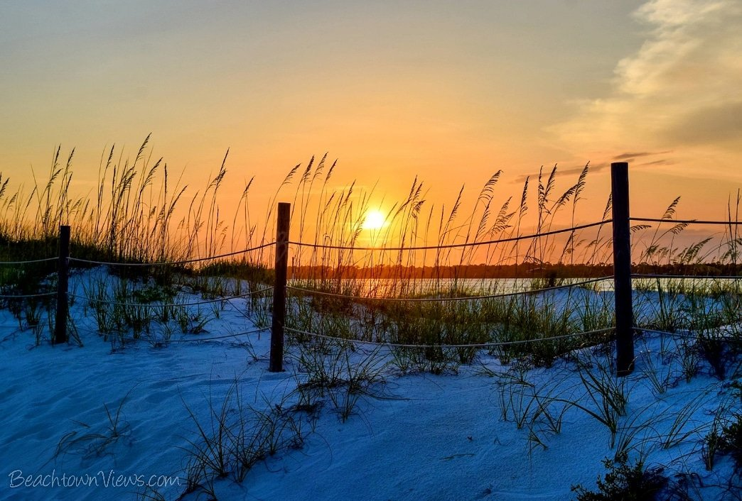 Sunsets by the sand dunes... beachtownviews.com #sunset #beach #beautiful #Amazing #Stunning #tranquil #Peaceful #Relaxing #florida #beachlife #SaltLife #lovefl #MotivationMonday @VisitPerdidoKey @GulfIslandsNPS @VISITFLORIDA @RealSaltLife @FloridianCreat1 #beachtownviews
