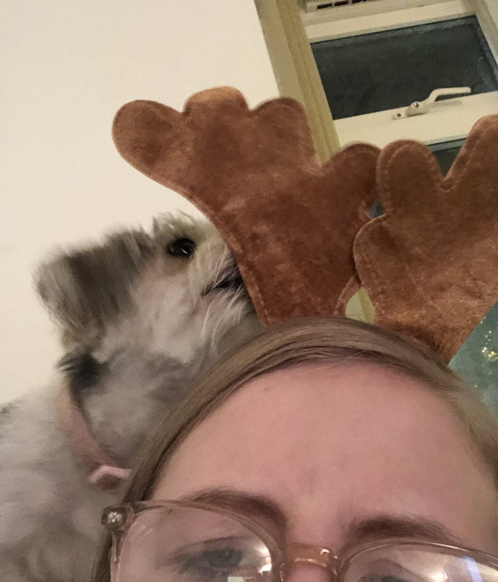charlie wants my antlers