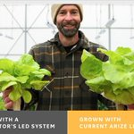 LED solutions are saving businesses big energy costs & helping cities grow smarter, but can light fixtures also help feed entire communities? The answer is yes! Read how: https://t.co/JiivAeuwrG #verticalfarming #horticulture