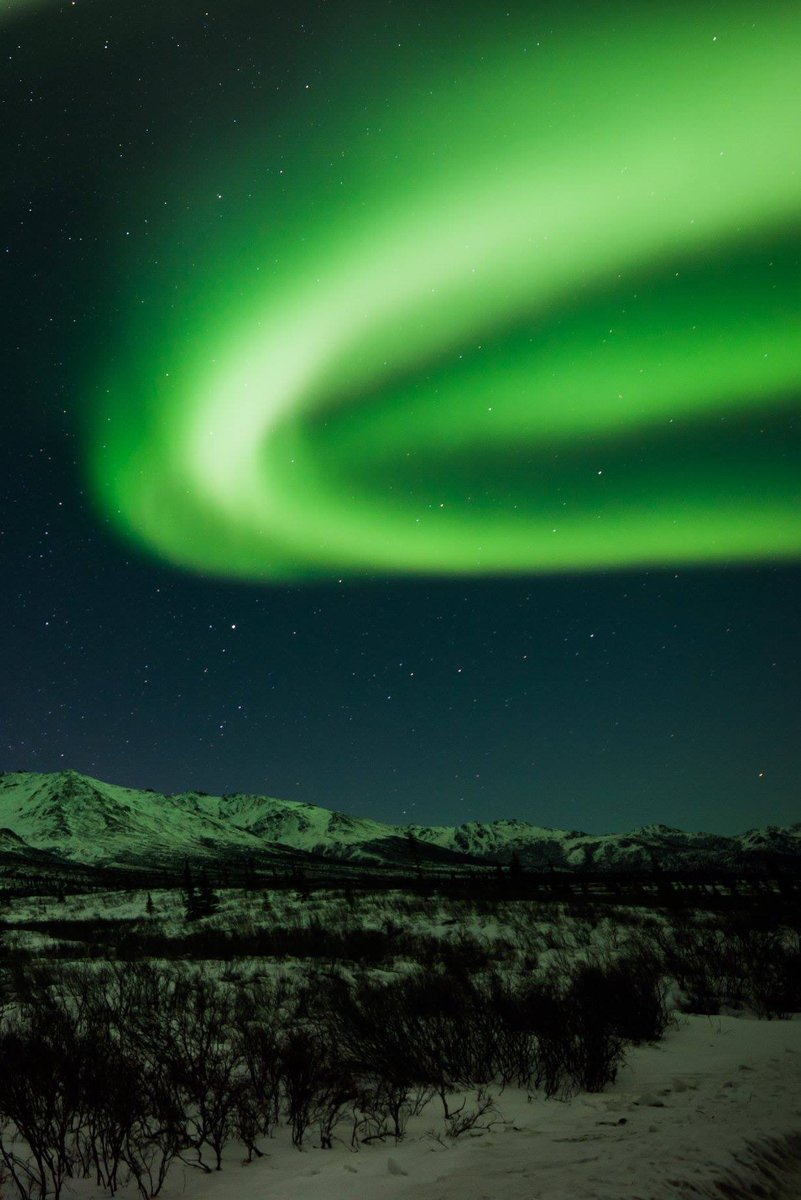 aurora Avatar