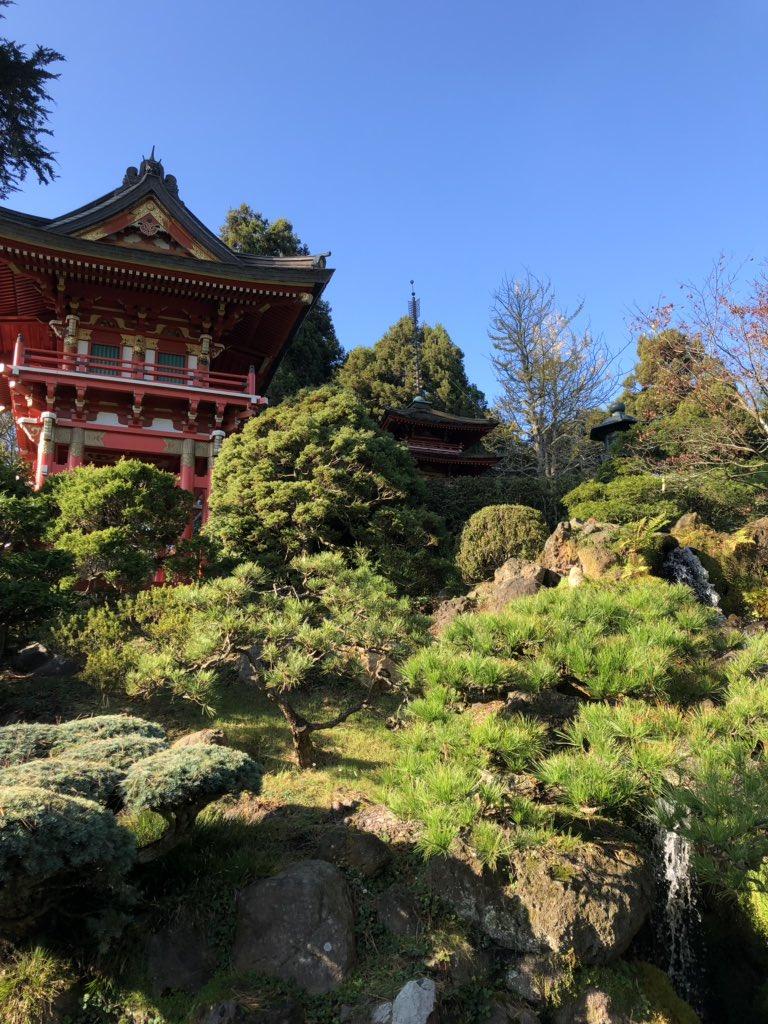 Along with Golden Gate Park I also walked to Haight-Ashbury and Alamo Square Park. #JapaneseTeaGarden #CaliforniaAcademyOfSciences #HaightAshbury #PaintedLadies #FullHousepic.twitter.com/NLvvtbVwvo