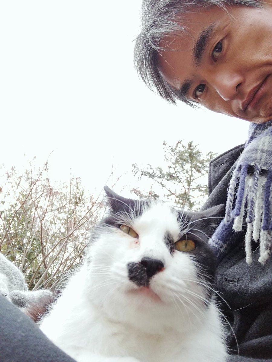 山本 真也さんの投稿画像