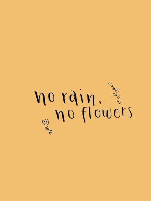 Después del dolor,cierra la herida y aprecias lo que vale estar bien, comprendes que el juego es así,pero ya no eres pieza eres empieza la Vida porque sin lluvia ...No hay flores #FelizMartes #BuenosDiasMundo Foto