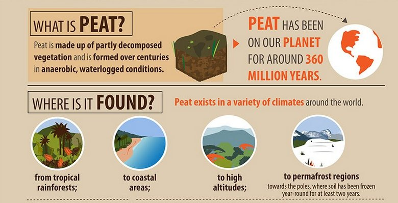 Now we know that #PeatlandsMatter for #ClimateAction but also for #people and the #planet and we need to #ActNow to protect and restore them. We need a joint declaration from the #MEAs on #peatlands . #GlobalPeatlandsInitiative @UNEnvironment @DiannaKopansky @COP24 @WetlandsInt
