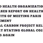 Image for the Tweet beginning: What's been happening at @COP24?  #ParisAgreement