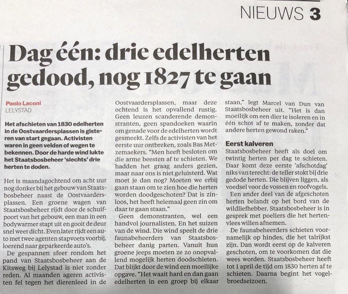 test Twitter Media - We zijn heel begaan met het lot van de edelherten in de Oostvaardersplassen en volgen het nieuws op de voet... mooi... maar hoe zit het met de duizenden vluchtelingen - vrouwen en kinderen - op Lesbos die half-kreperen in de winter?? Waarom kijken we daar weg? #kijknietweg https://t.co/qsABo6A7Vm